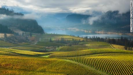 Bottle stops: 15 wine roads worth getting sidetracked on