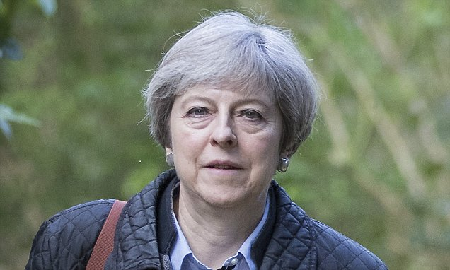 EU anxiety of Vladimir Putin owned May's profession safety connection – Daily Mail