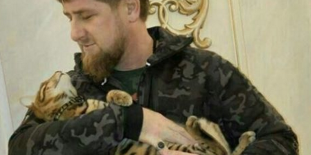 Chechen Strongman Issues Instagram Plea To Find His Missing Cat