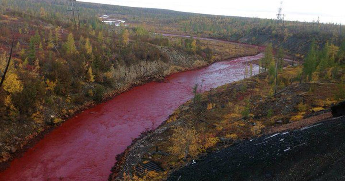 A river reddened in Russia for a really non-Biblicalfactor
