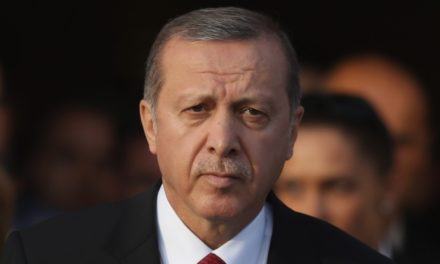 Turkey's Erdogan requires UN shakeup over Syria battle