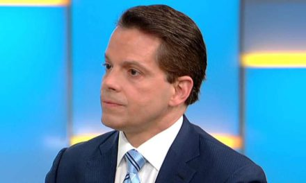 Scaramucci calls Russia tale' rubbish, ' alerts media' stability' in jeopardy after CNN retraction – Fox News