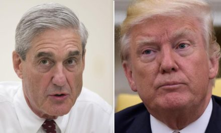 Trump is thinking about shooting unique therapy Mueller, pal states