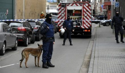 Paris assaults examination: Latest developments