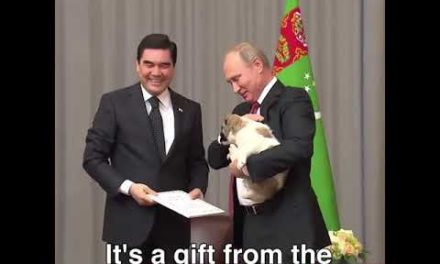 President Putin obtained a brand-new pup! 2017