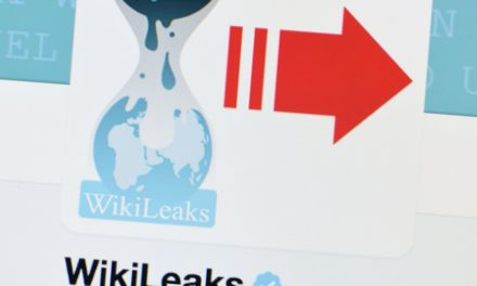 WikiLeaks creator states he had not been aiming to persuading the United States political election
