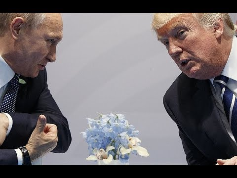 Putin, Trump to fulfill on November 10– Kremlin assistant.