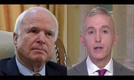 John McCain Claims FISA Memo Only Helps Putin, – Trey Gowdy Puts Him In His Place