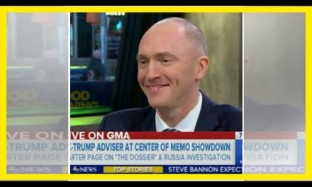 Stephanopoulos Grills Carter Page: 'You're an Adviser to the Kremlin, Then You're an Adviser to Tru