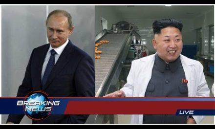 Erdogan roste Syrien- angreb: Nu har han talt med Putin