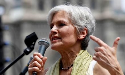 Green Party's Jill Stein worried concerning 'demonization' of North Korea