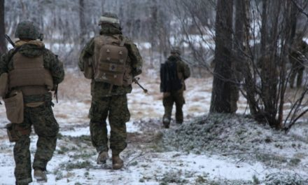 United States to increase variety of Marines in Norway amidst Russia stress