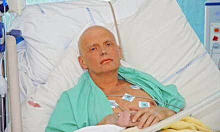 Litvinenko 'possibly killed on individual orders of Putin'