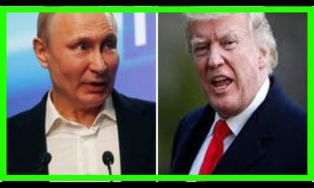 No setups for feasible following conference in between Putin, Trump yet: Kremlin