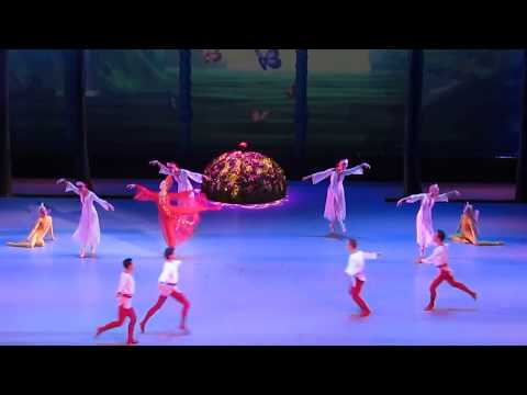 "7th International Ballet Festival in theKremlin ""ScarletFlower"".Premiere"