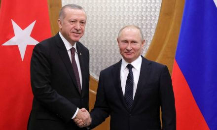 Putin has excellent count on in the direction of Erdogan, states Kremlin representative – TASS