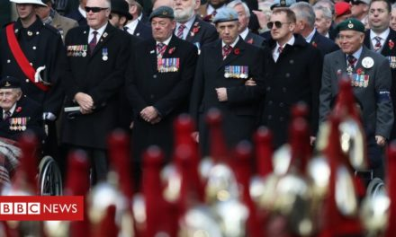 In images: Armistice Day