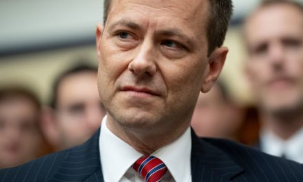 Republican Thought Peter Strzok Would Be a PunchingBag He Just Knocked ThemOut