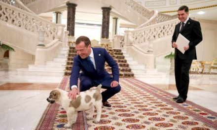 This week in images: Lavrov's umbrella security, Medvedev's pup as well as warm potato for Trump – TASS