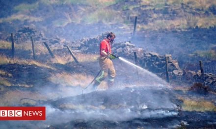 Moorland fire solution in bbq appeal