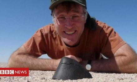 The guy who owns 1,000 meteorites