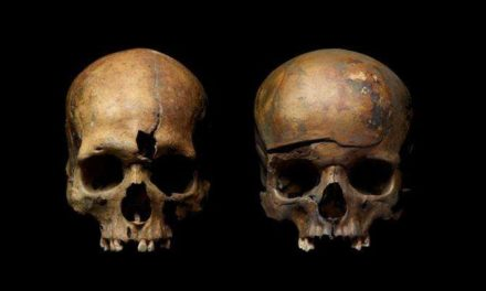 DNA Analysis Confirms Family Massacred By Mongol Army In 13 th Century Suffered Violent Death