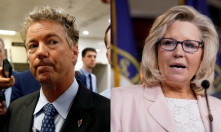 Rand Paul bare Liz Cheney Compete all for Trumps Affection, Get Into Butt-Kissing Twitter Spat