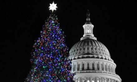 5 points to understand for December 24: Politics, tidal wave, Al Qaeda, Morocco, getaway joy